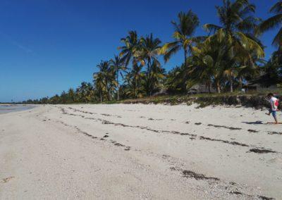 kilwa beach - kilwa ruins