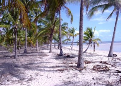 beach kilwa