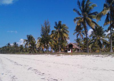 kilwa beach lodge1